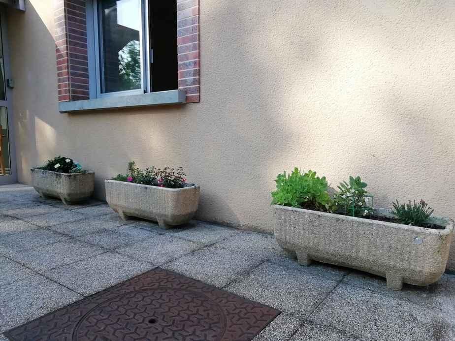 jardinage-2